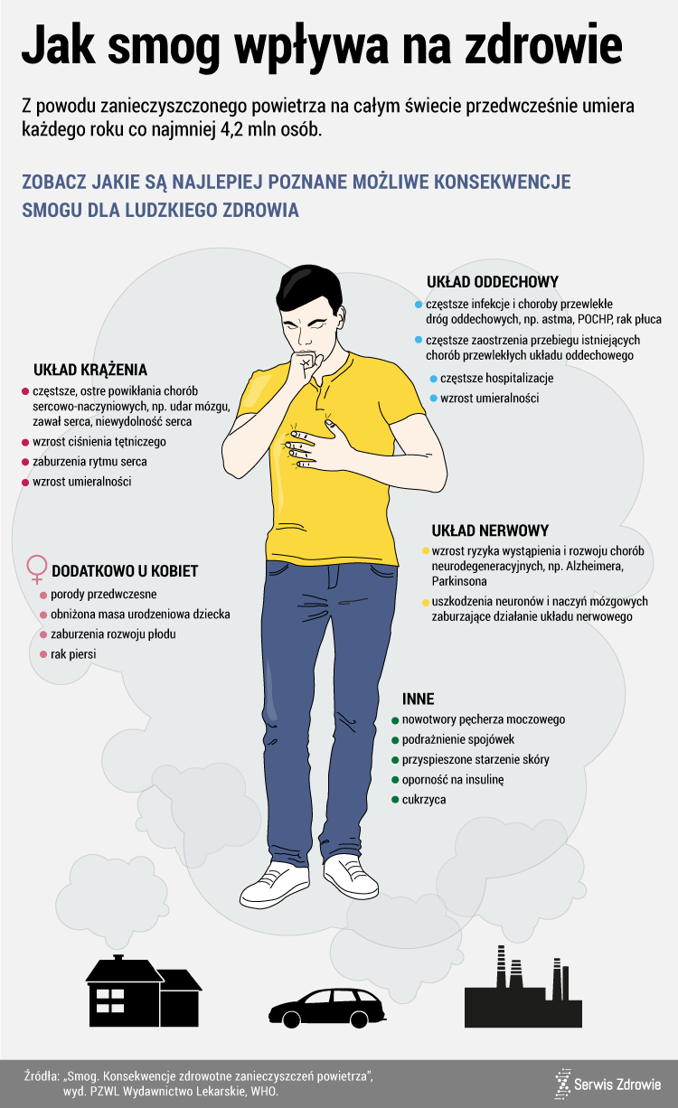 Infografika PAP/Serwis Zdrowie/M. Samczuk