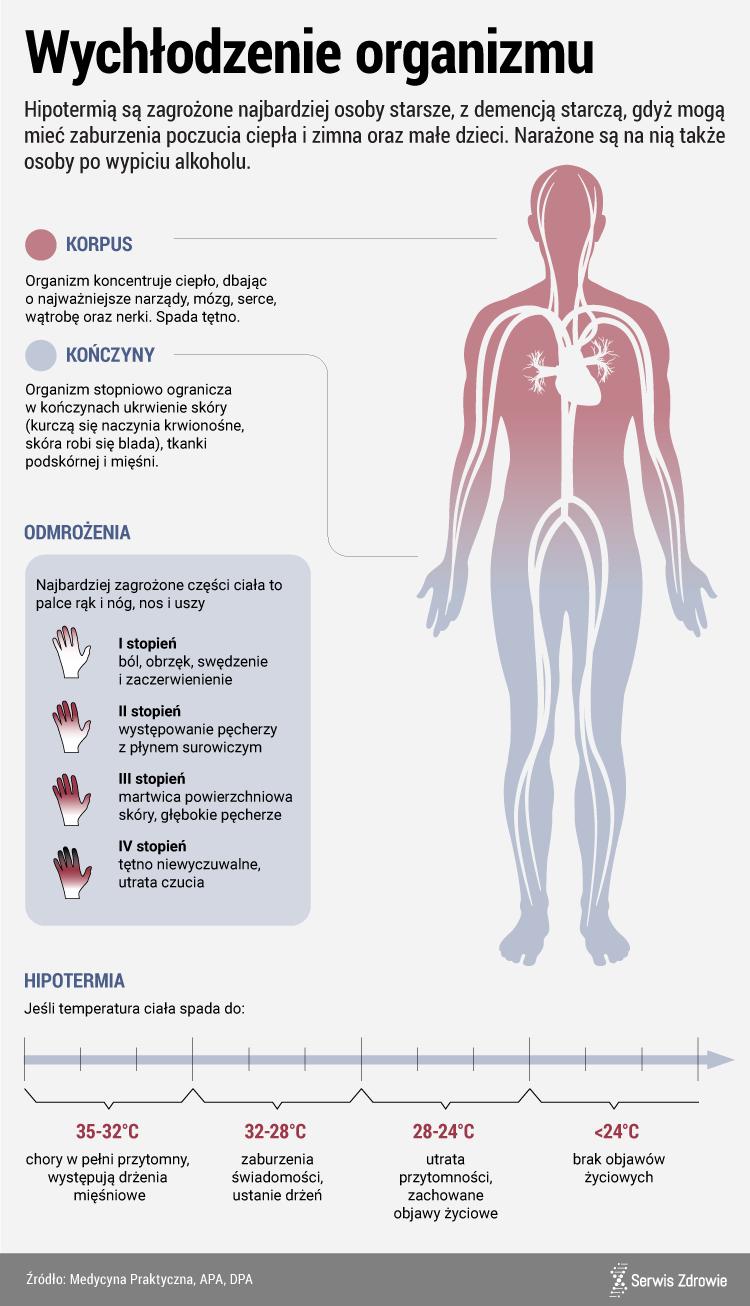 Infografika PAP