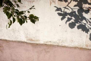 Ilustracja do artykułu o synestezji/Fot. PAP/P. Werewka