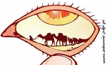 Używanie soczewek kontaktowych zwiększa ryzyko rozwoju suchego oka?
